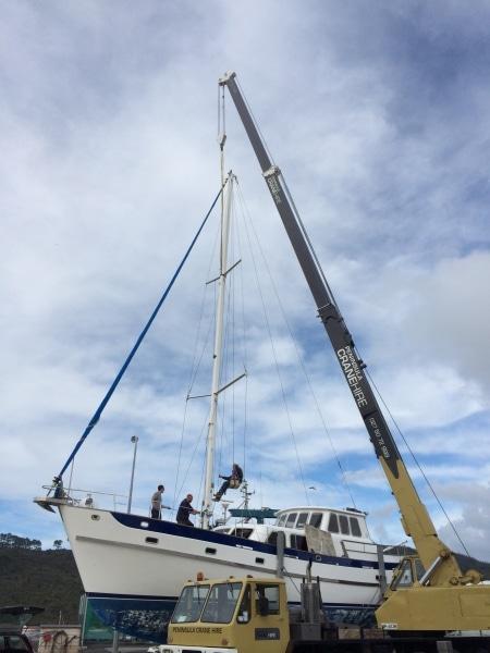 Georgia Alexis-mast removal